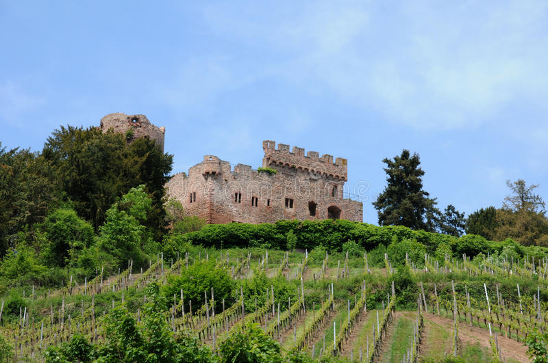Download The Castle Of Kintzheim In Alsace Stock Photo - Image: 28315524