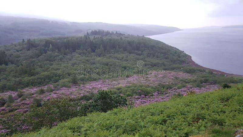 Castle lachlan στη λίμνη μακριά στοκ εικόνες