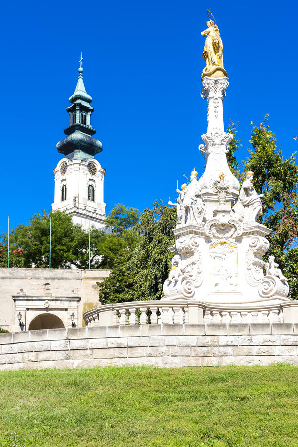 Castle in Nitra, Slovakia. The plague column and castle in Nitra, Slovakia royalty free stock images