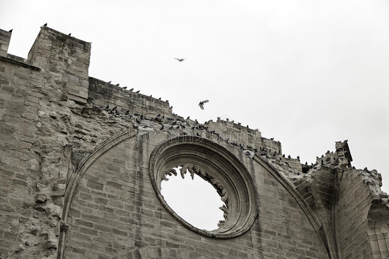 Castle with pigeons. In viana, historical building Borgia stock photo