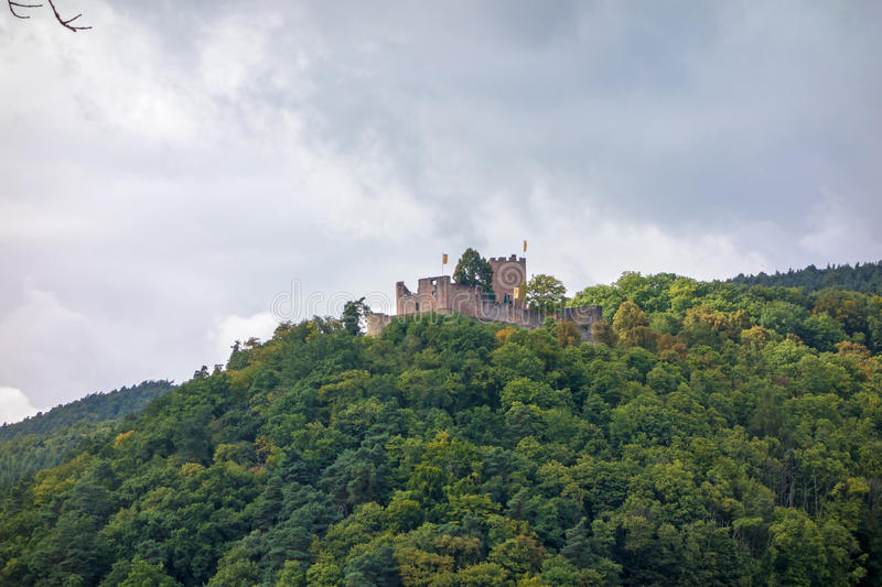 Castle / ruin at the Weinstrasse. Germany stock images