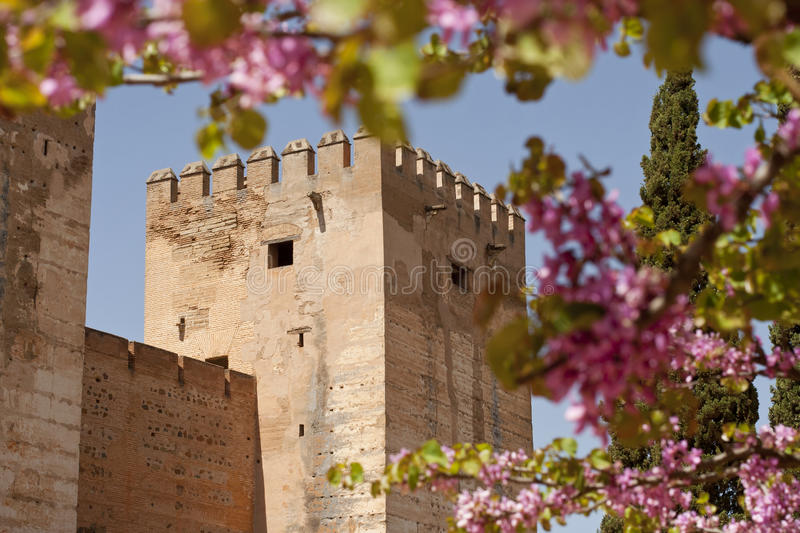 Download Castle Wall Surrounded By Flowers Stock Photo - Image: 20117382