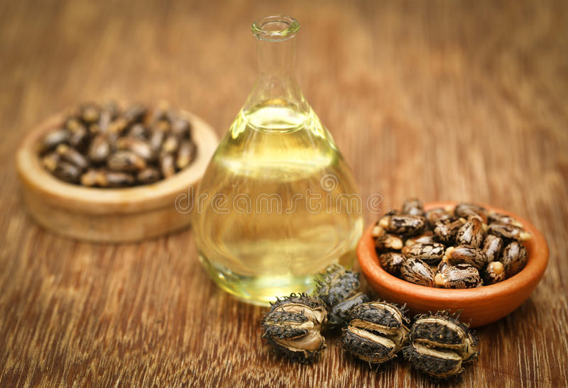 Castor beans and oil stock image
