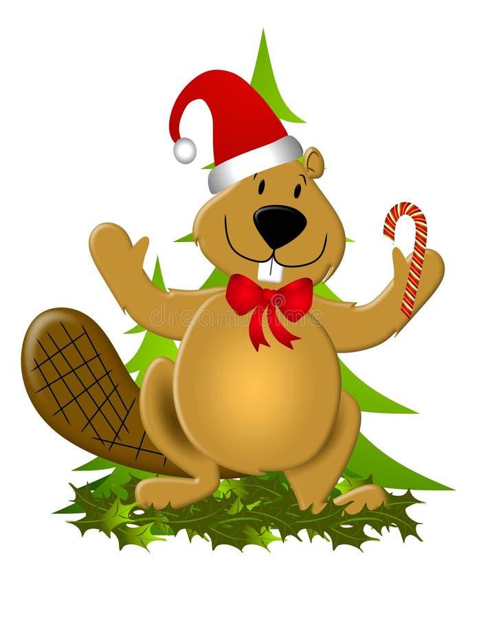 Castor de Canadá do Natal ilustração royalty free