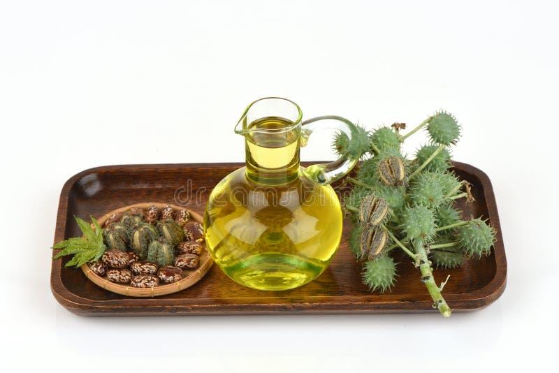 Castor oil bottle with castor fruits, seeds and leaf. stock image
