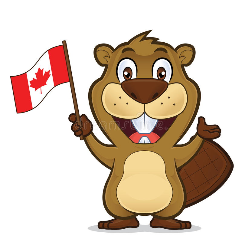 Castor que guarda a bandeira canadense ilustração stock