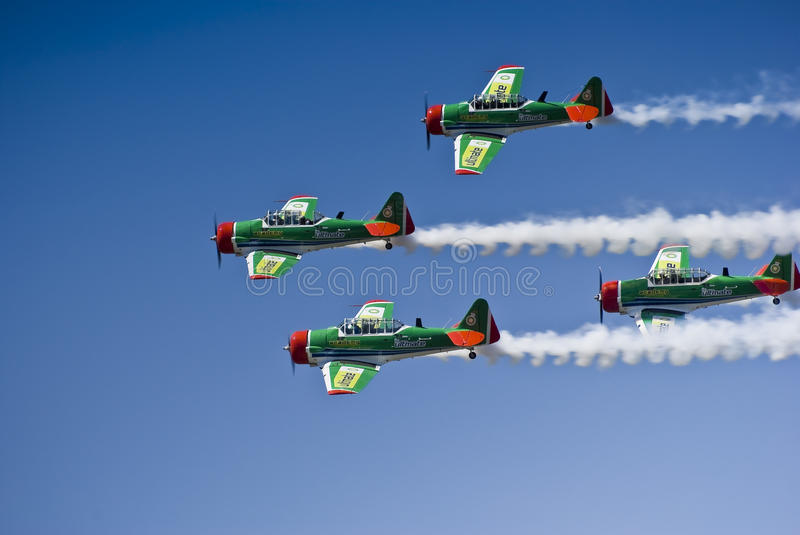 Castrol Flying Lions Harvard Aerobatic Team. The Castrol Flying Lions Harvard aerobatic team, treat spectators to a marvelous display of formation flying. 2010 stock photography