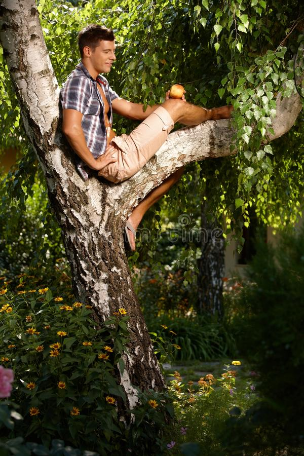 Casual Man Relaxing On Bough Royalty Free Stock Images