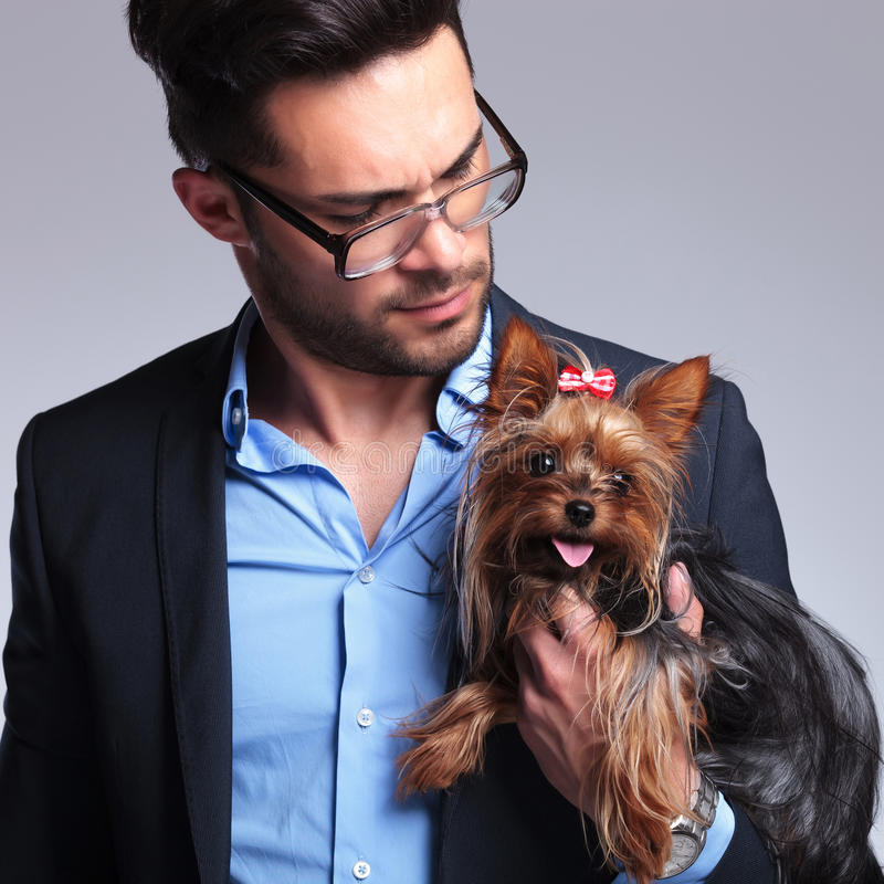 Download Casual Young Man Looks At Puppy Stock Photo - Image: 33178552