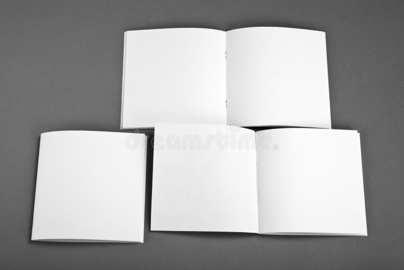 Catálogo en blanco, folleto, revistas, mofa del libro para arriba foto de archivo libre de regalías