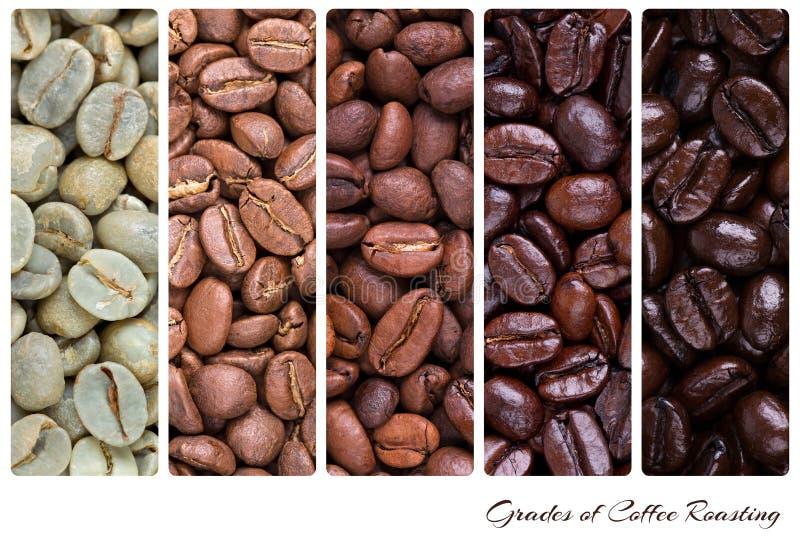 Catégories de la torréfaction de café photos libres de droits