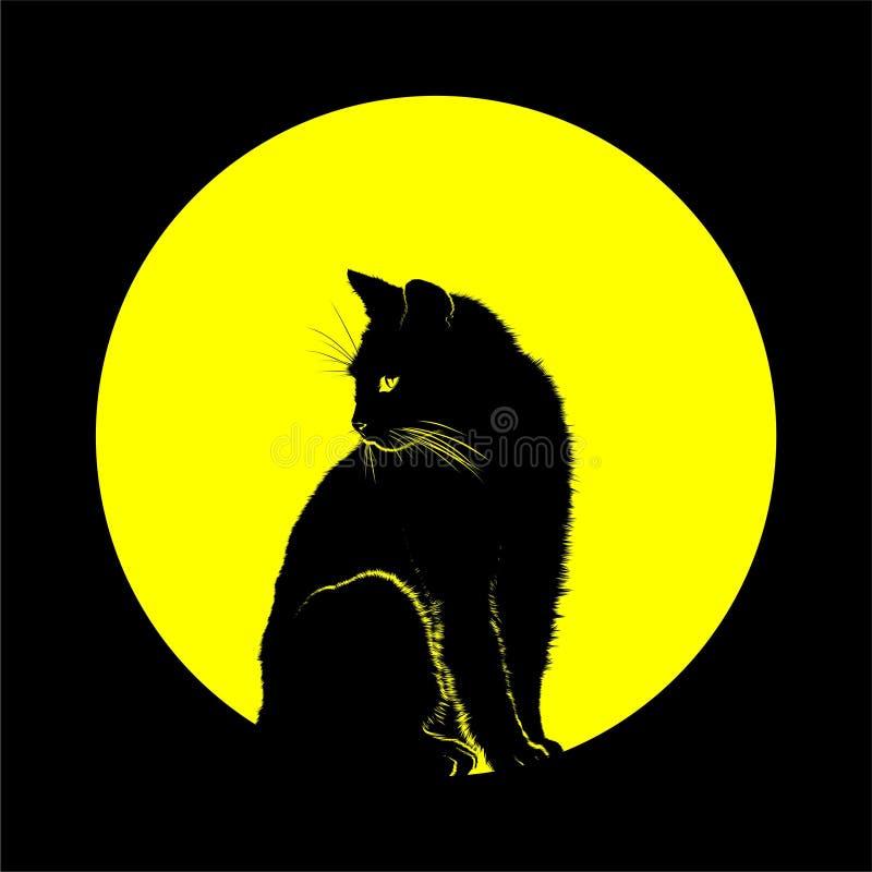 CAT月亮 库存照片