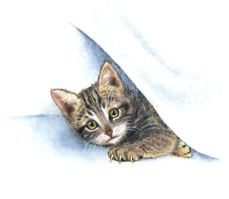 Cat. Pretty cat playing under the sheets vector illustration