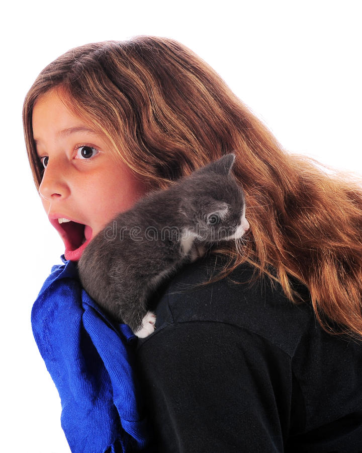 Free Cat Attack Royalty Free Stock Photography - 15612137