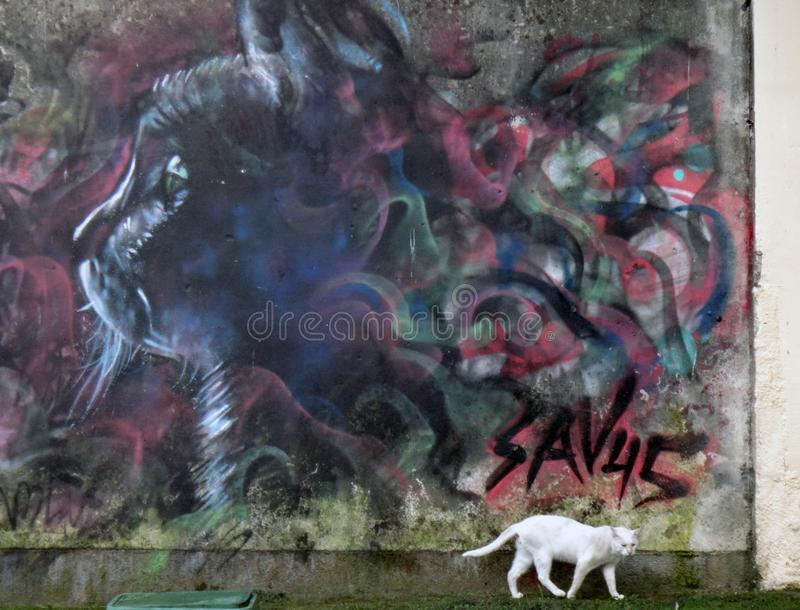 Cat and portrait. Cat on the background of a portrait, sealed on the wall by an artist in the style of graffiti. The city of Lloret de Mar in Spain royalty free stock images