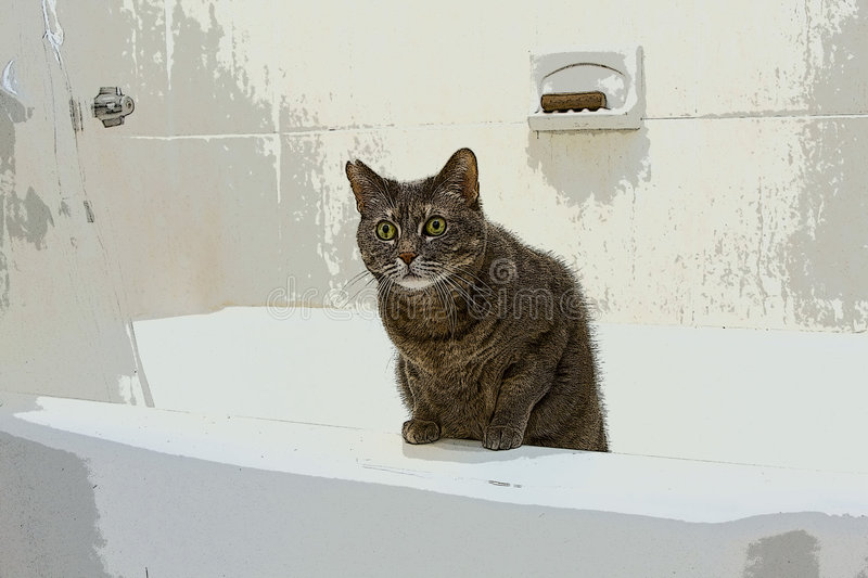 Cat In Bathtub Royalty Free Stock Image