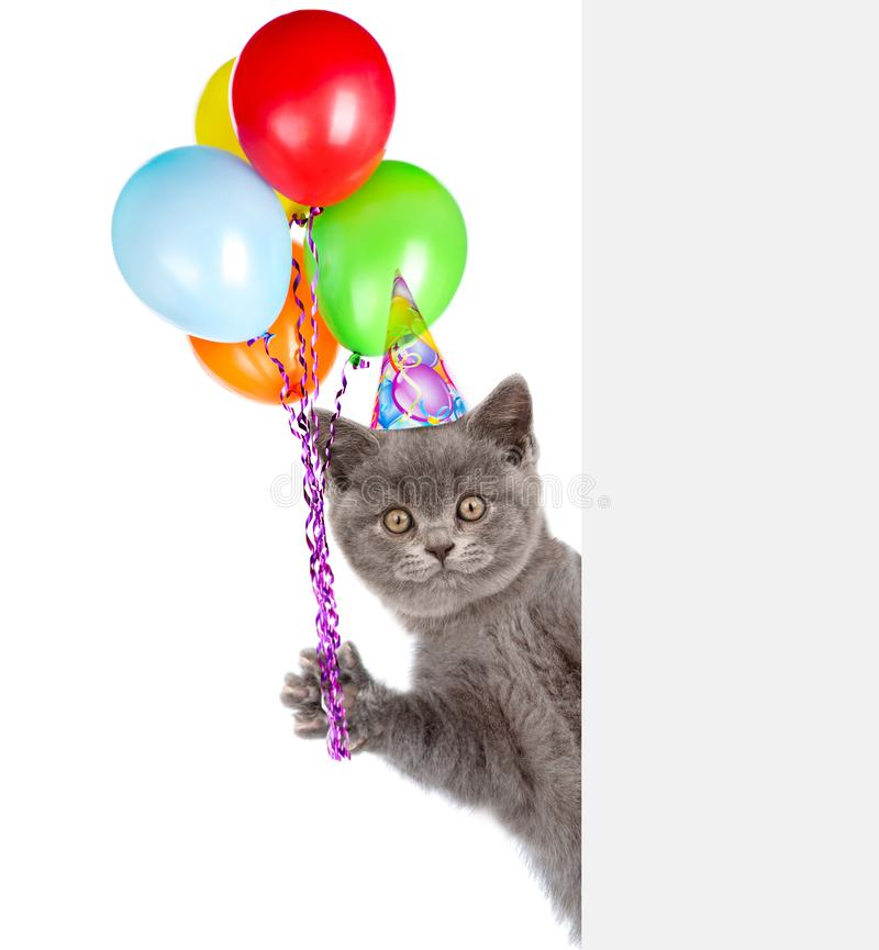 Cat in birthday hat holding balloons peeking from behind empty board. isolated on white background.  royalty free stock photography