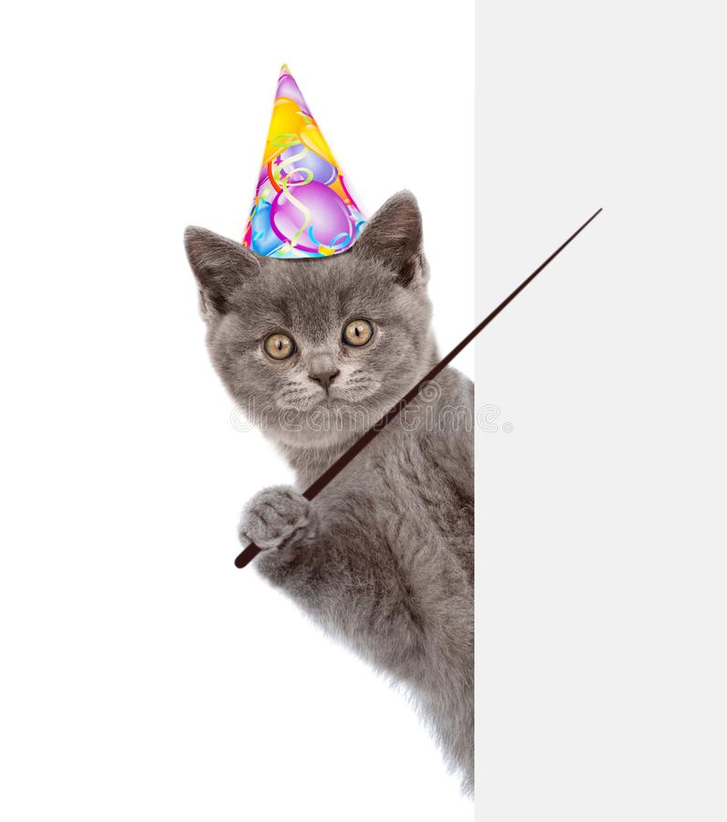 Cat in birthday hat holding a pointing stick and points on empty banner. isolated on white background.  royalty free stock images