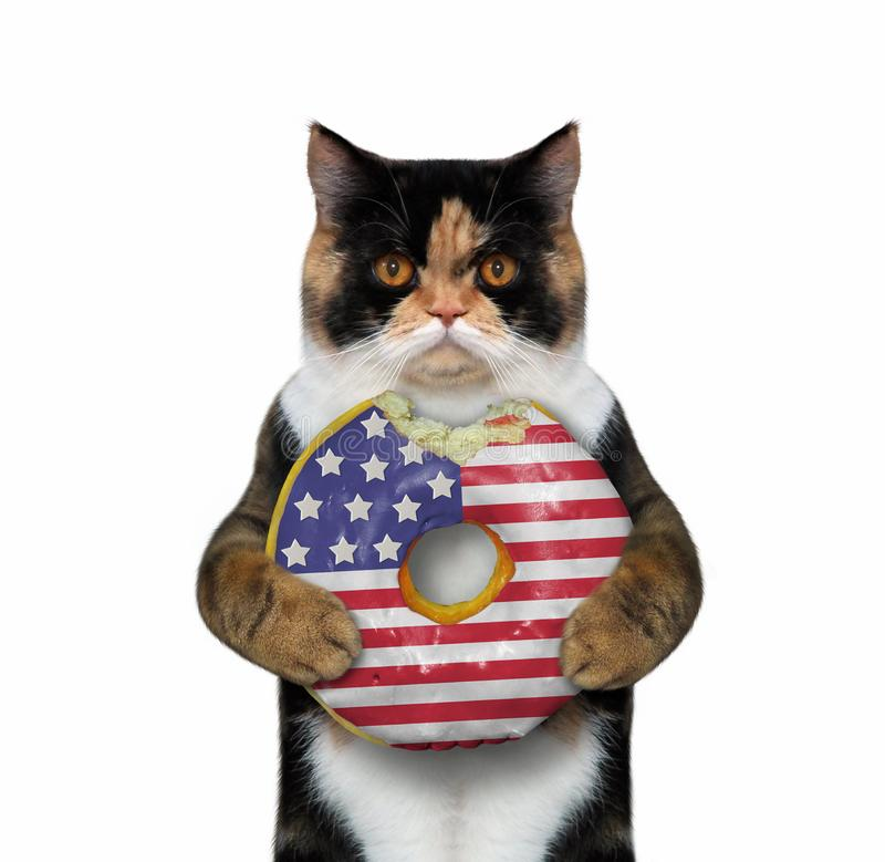 Cat with a bitten american donut 2 royalty free stock photos