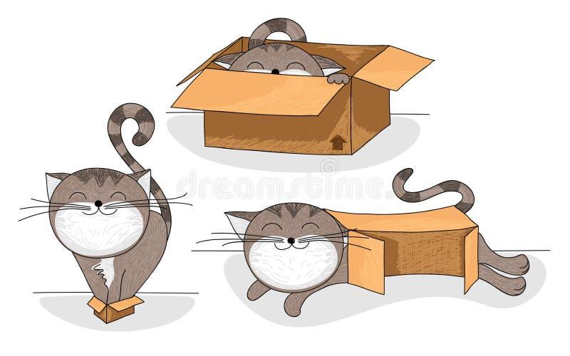 Cat in box cartoon set vector illustration