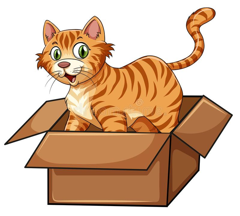 A cat in the box stock illustration