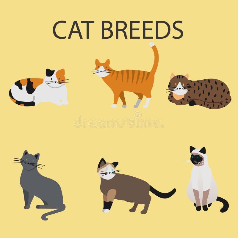 Cat Breeds, kattenpictogrammen vector illustratie