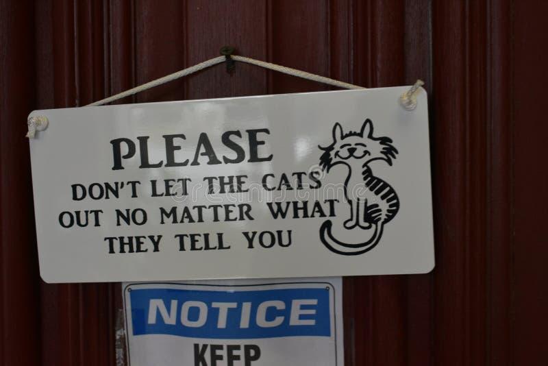 Cat Cafes på löneförhöjningen - Mewsic Kitty Cafe royaltyfri bild