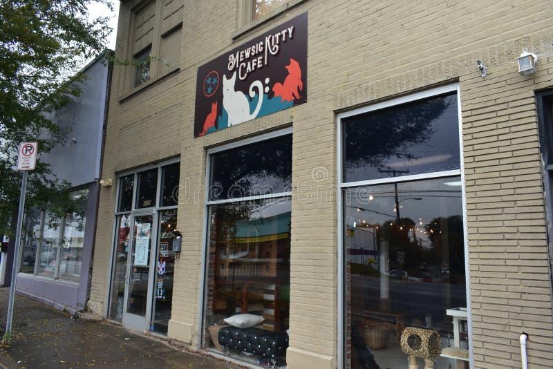 Cat Cafes på löneförhöjningen - Mewsic Kitty Cafe royaltyfri foto
