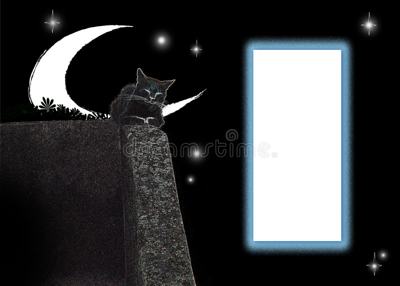 Cat card stock images