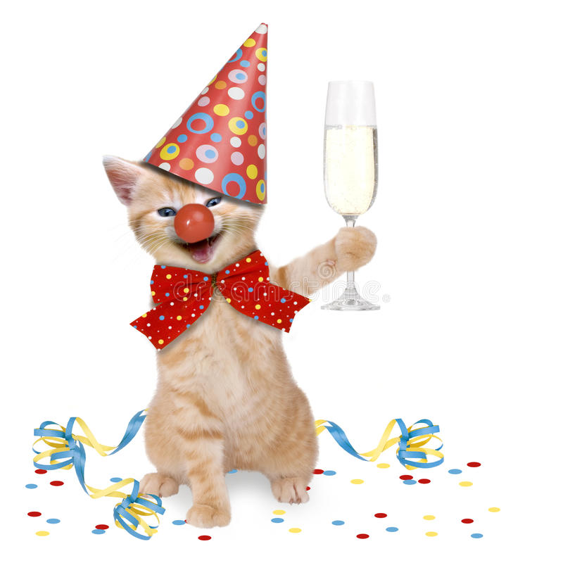 Cat Carnival/partie image stock