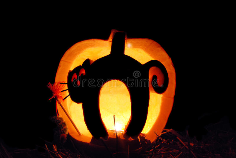 Download Cat carving in pumpkin stock image. Image of spooky, light - 21794273