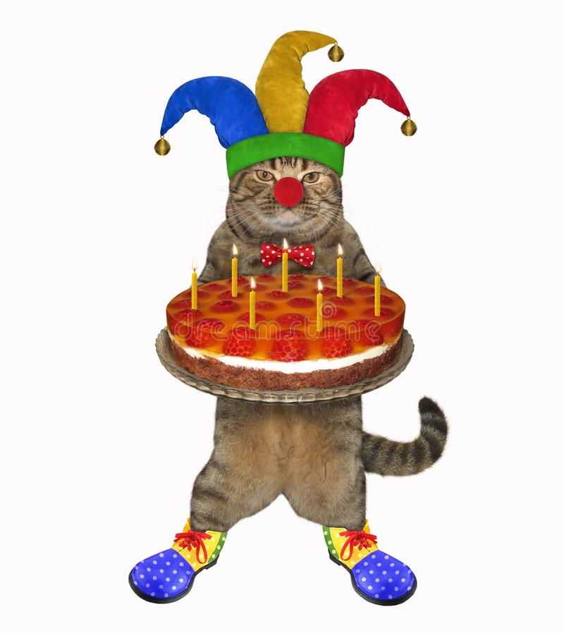 Cat clown with a birthday cake vector illustration