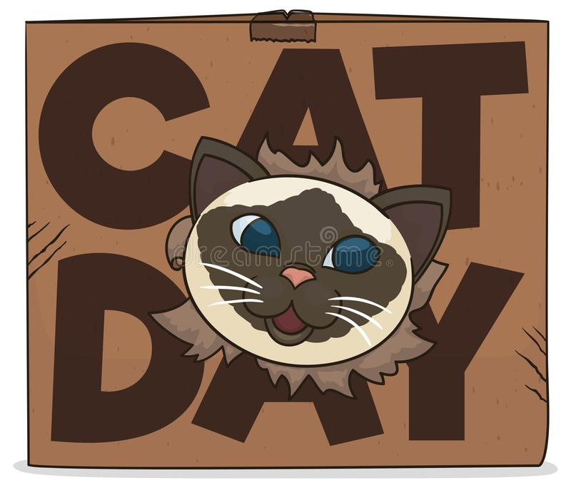 Cat Coming Out From a Cardboard Box for Cat Day, Vector Illustration. Happy and mischievous Himalayan cat showing its face through a cardboard box, celebrating royalty free illustration