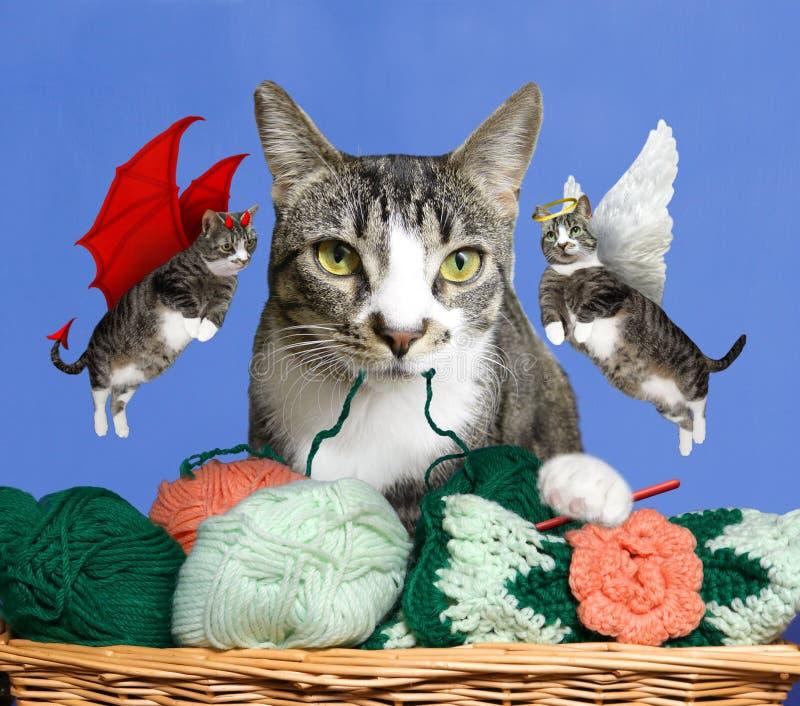 Cat Conscience - bom Angel Kitty ou gato mau do diabo - qual escolhem? imagens de stock royalty free