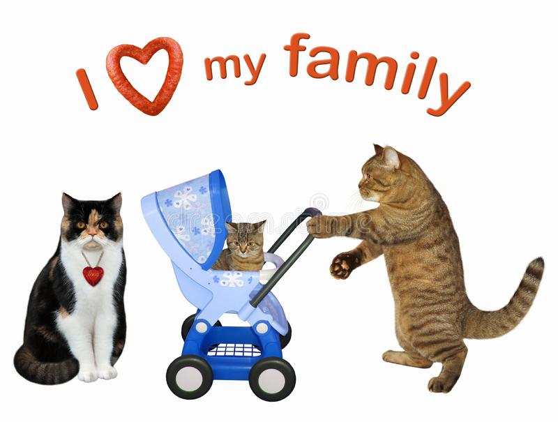 Cat couple with their kitten in a stroller royalty free stock photos