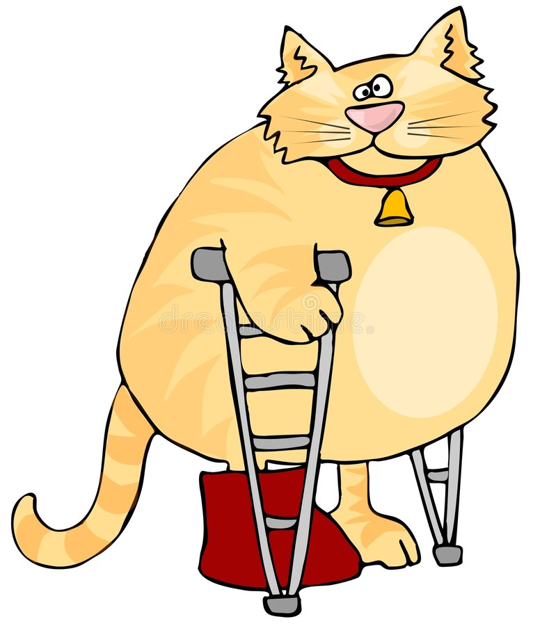 Cat On Crutches royalty free illustration