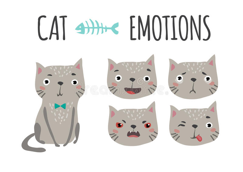 cat cute συγκινήσεις που τίθεντ&alp ελεύθερη απεικόνιση δικαιώματος