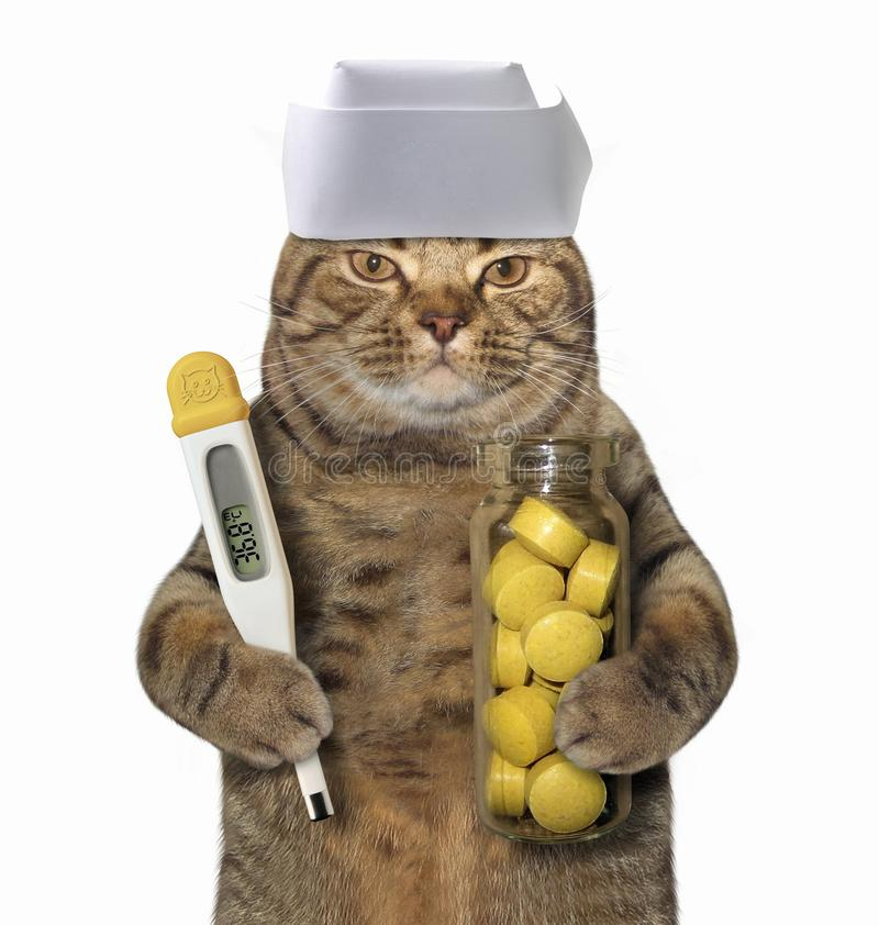 Cat doctor with thermometer. The cat doctor is holding a thermometer and a bottle of pills. White background stock images