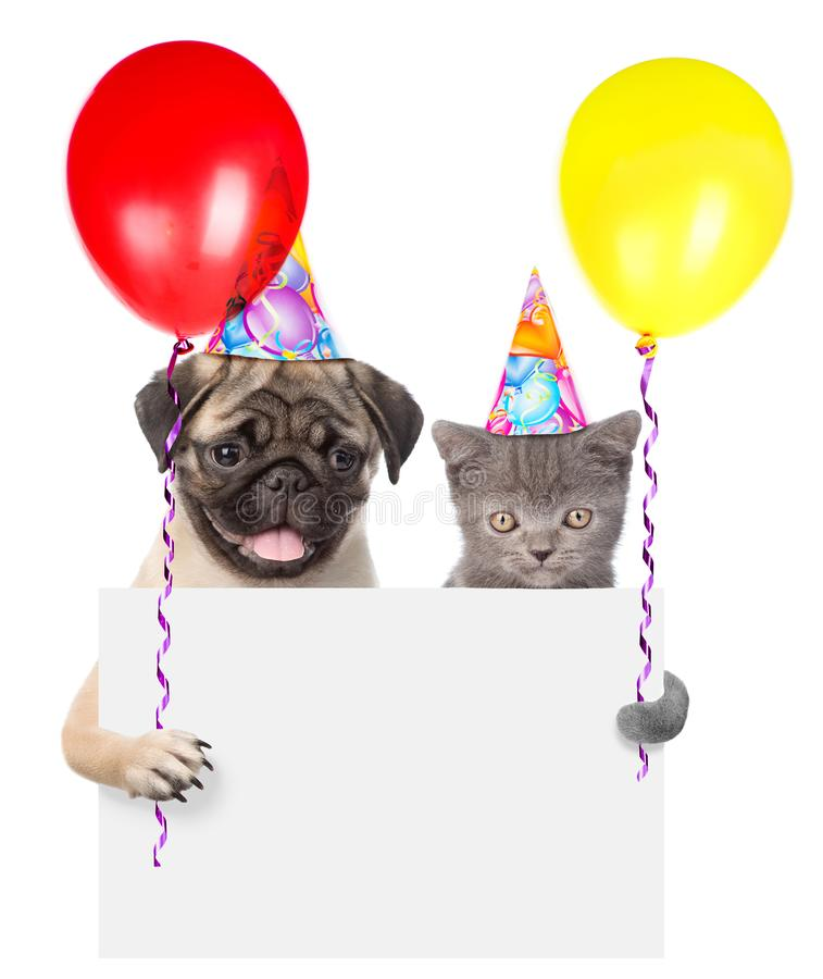 Cat and dog in birthday hats holding balloons peeking from behind empty board royalty free stock photo