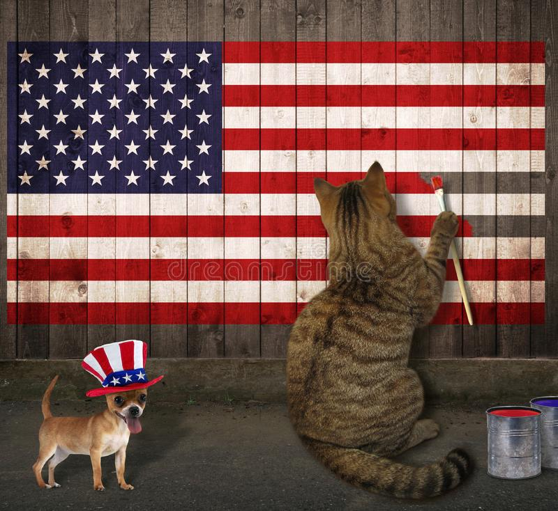 Cat and dog draw the American flag. The cat and dog draw the American flag on a wooden fence stock photos