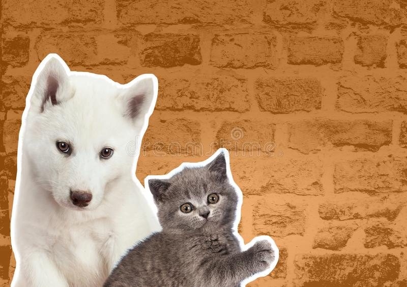 Cat and dog looks at right in front of yellow brick wall. Cartoon zine retro style.  royalty free stock photography