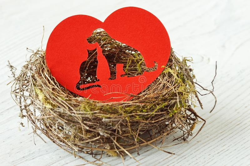 Cat and dog silhouette cut out in paper heart in a nest - Concept of pet love and care royalty free stock images