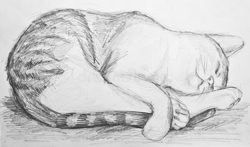 Cat drawing stock photo