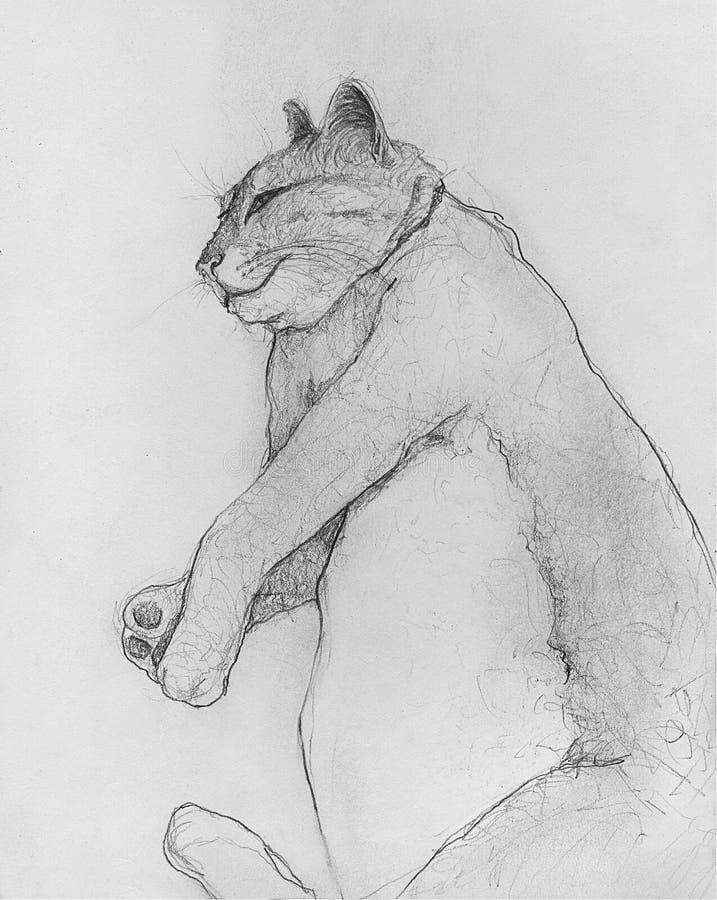 Cat Drawing grassa illustrazione di stock