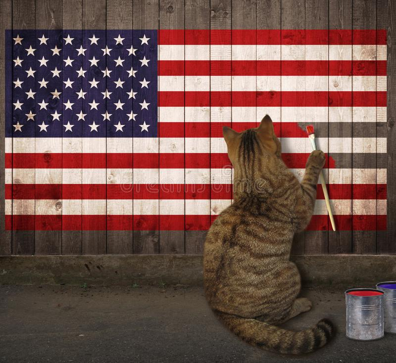 Cat draws the American flag. The cat draws the American flag on a wooden fence stock photos