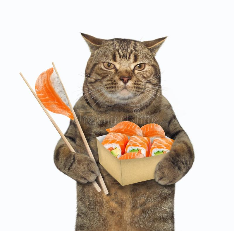 Free Cat Eats Sushi With Chopsticks 2 Royalty Free Stock Photos - 155851618