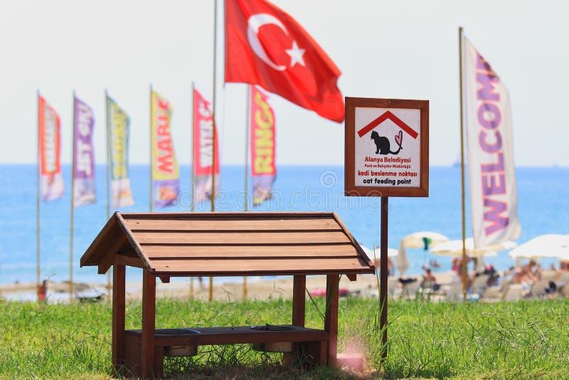 Cat feeding point. Alanya,Turkey. royalty free stock image