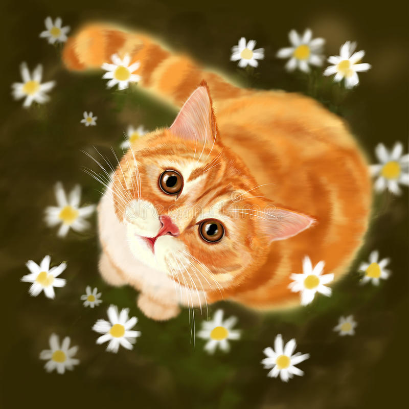 Cat in the fields stock illustration