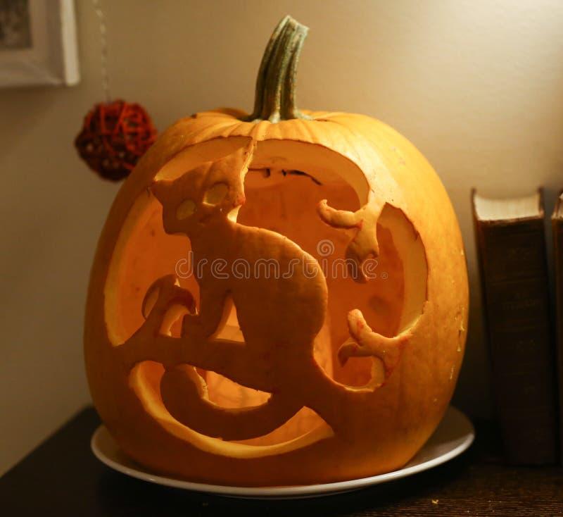 Cat figure cut out halloween pumpking close up photo stock image