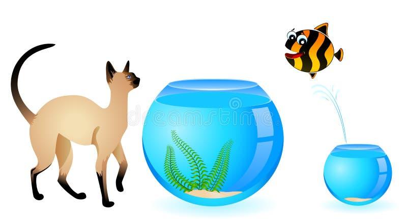 cat with  fish in aquarium